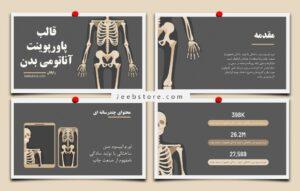 قالب پاورپوینت آناتومی بدن انسان